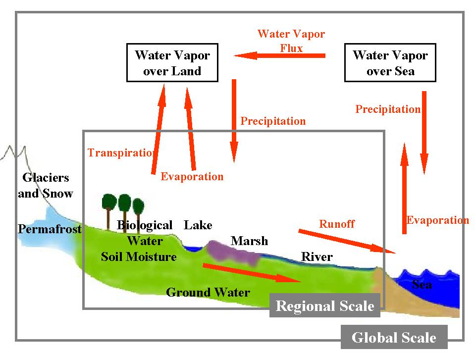 Evapotranspiration Water Cycle a Water Cycle in Nature is